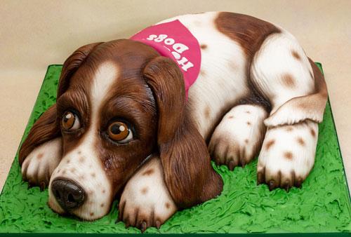 Springer-Spaniel-dog-carved-cake