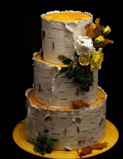 Silver-Birch-Wedding-Cake-East-Yorkshire